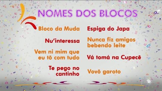 Saiba o significado de nomes curiosos dos blocos de carnaval de SP
