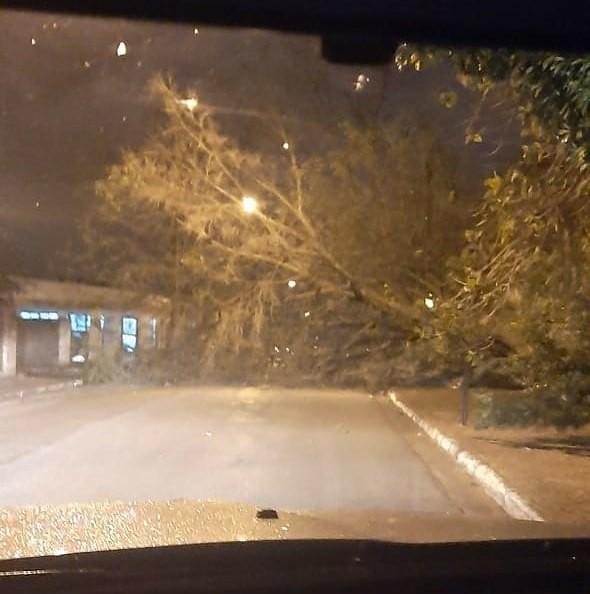 Defesa Civil emite alerta para rajadas de vento em todo o estado de São Paulo