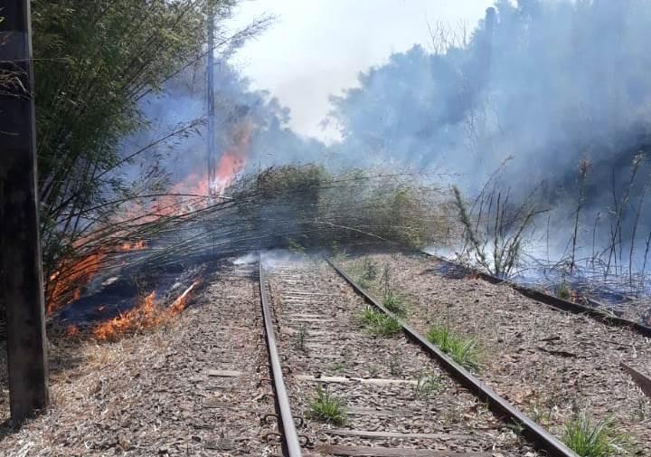 Fogo em linha férrea interrompe roteiro turístico de trem entre Louveira e Vinhedo em dia de inauguração; veja imagens