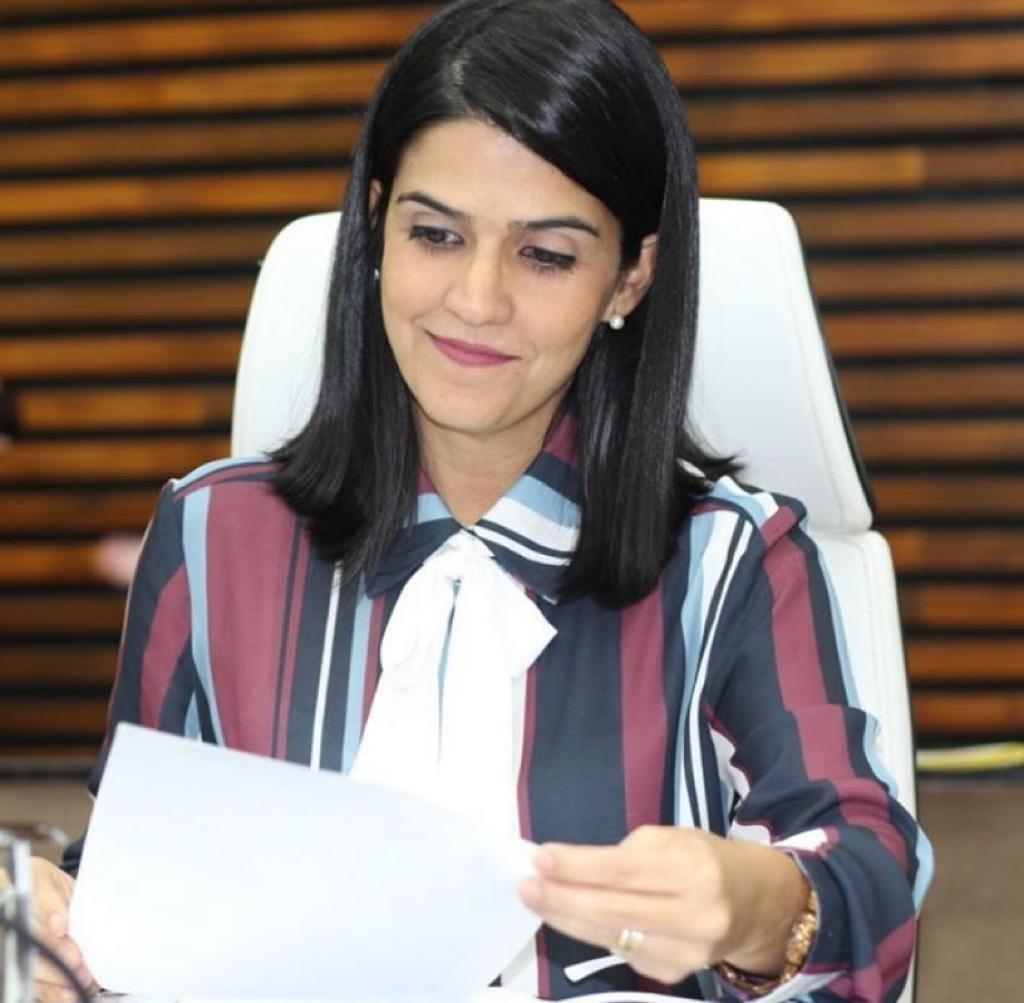 Câmara de Santos vota projeto que prevê emissão de boletins diários sobre pacientes internados
