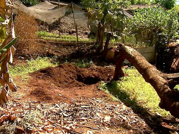 Fragmentos de ossos e dois dentes foram encontrados no quintal da casa (Foto: Reprodução/EPTV)