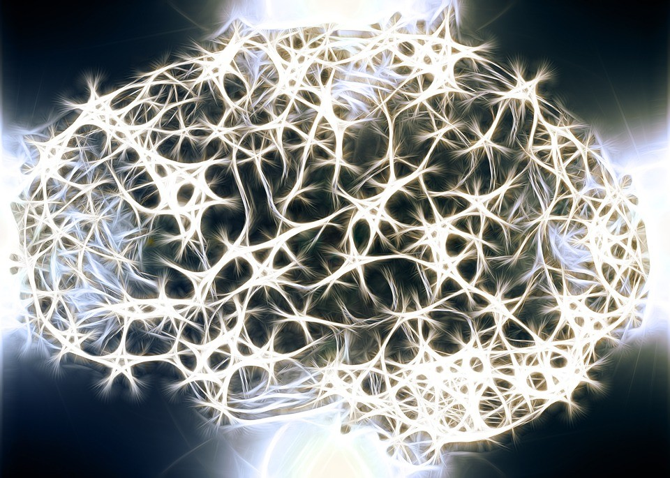 Quantidade de neurônios no cérebro influencia a inteligência dos humanos (Foto: Pixabay/Geralt/Creative Commons)