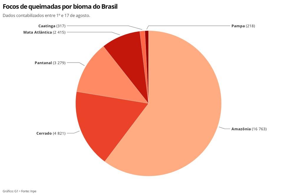 Focos de queimadas por bioma do Brasil — Foto: Carolina Dantas/G1
