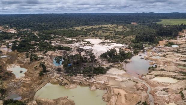 Segundo reportagem investigativa, poluidores têm recebido 'passe livre' para emitir CO2, sem que créditos para compensar essa emissão estejam sendo de fato revertidos em preservação florestal (Foto: FERNANDO MARTINHO FOR PROPUBLICA, via BBC News Brasil)