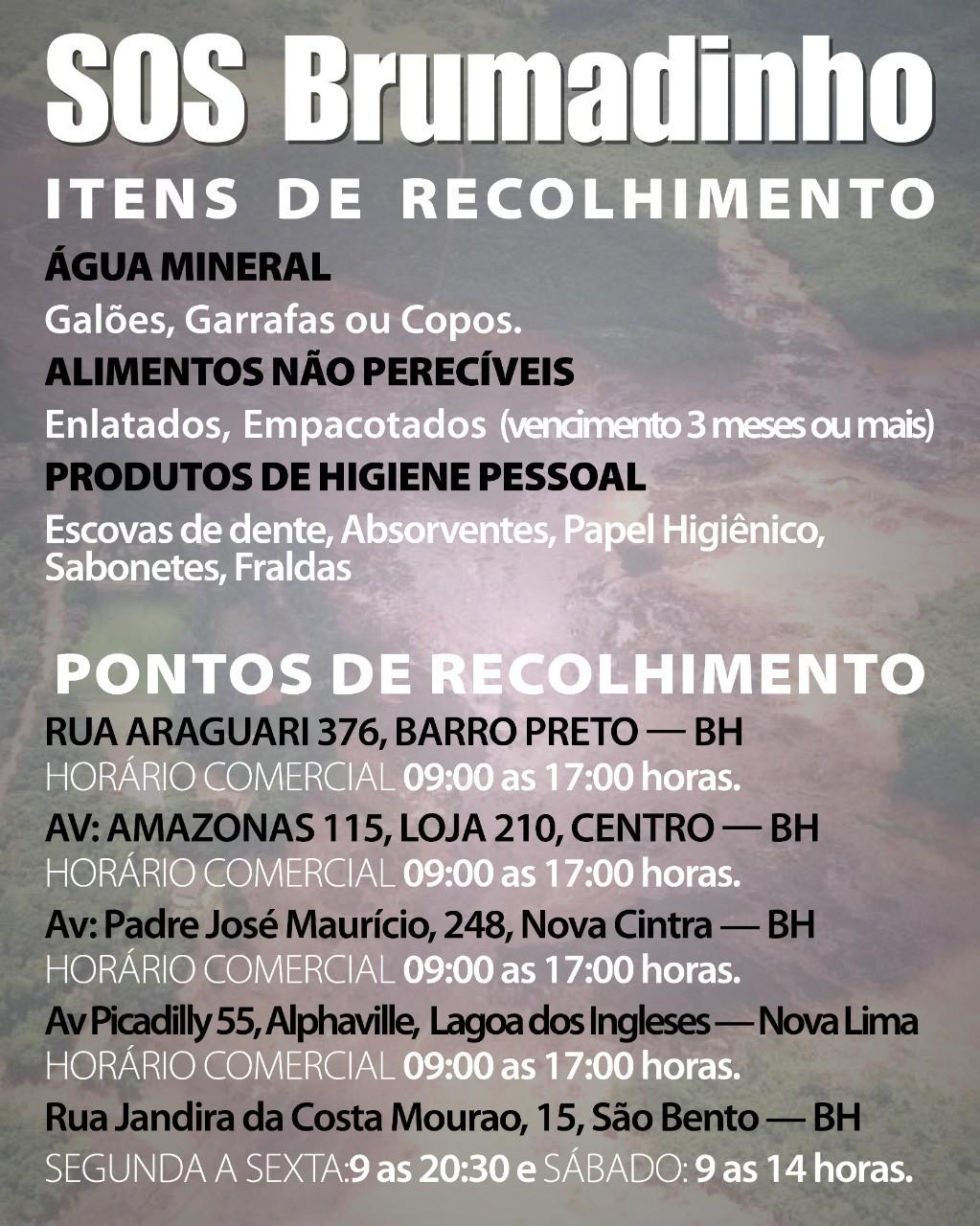 SOS Brumadinho (Foto: Reprodução)