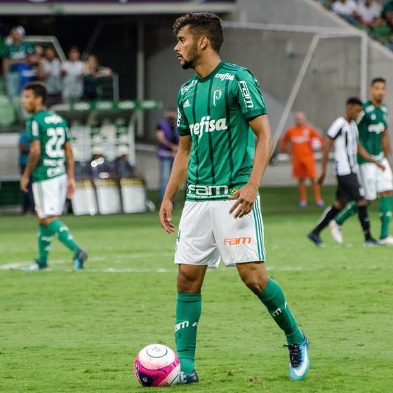 Palmeiras (Foto: Gero Rodrigues/Ofotografico.)