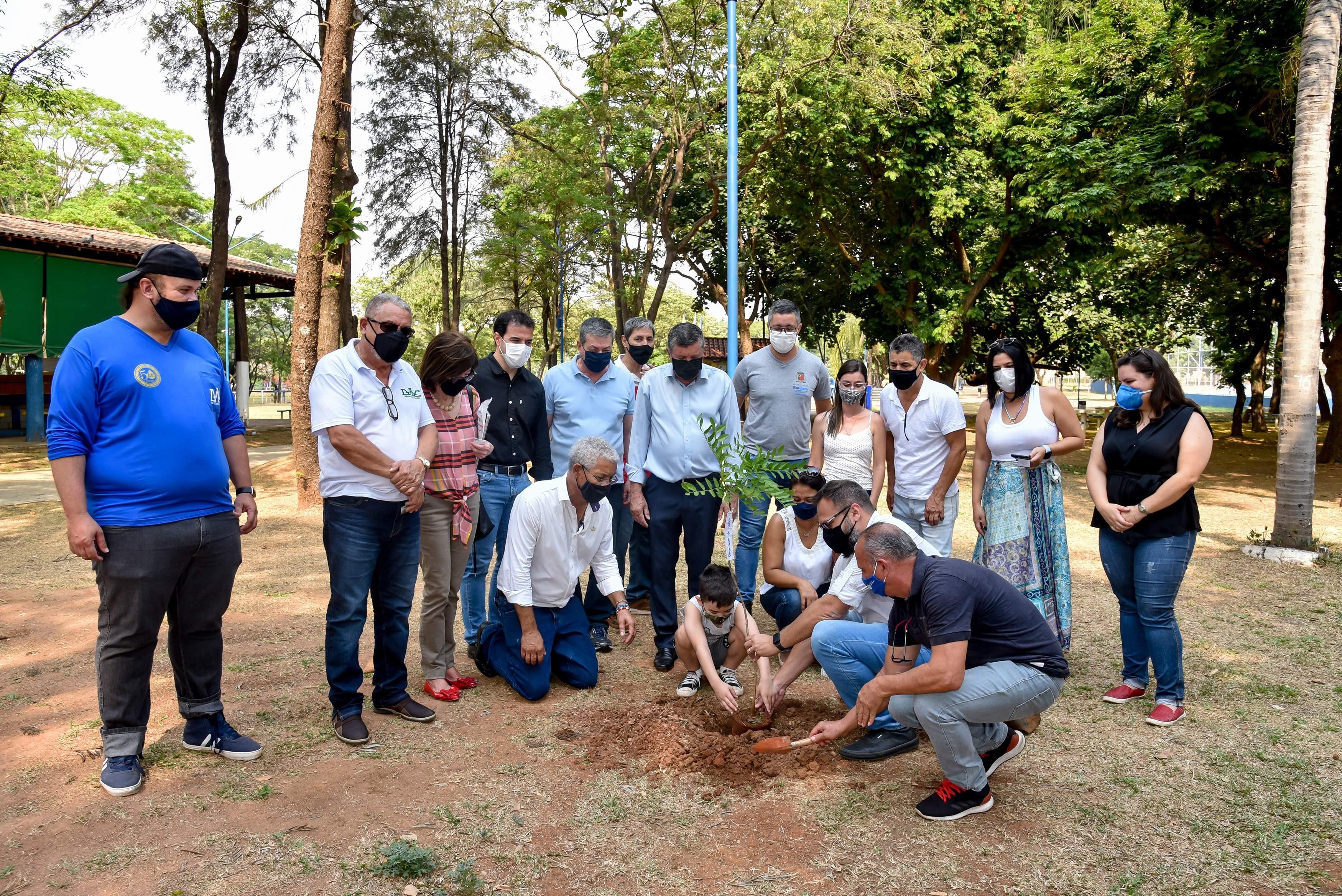 Prefeitura de Rio Claro cria projeto de incentivo ao plantio de árvores para recuperação florestal