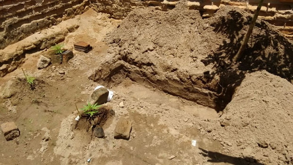 Suspeito havia cavado a cova no quintal de casa para enterrar a mulher dele (Foto: Divulgação/Blog Agreste Violento)