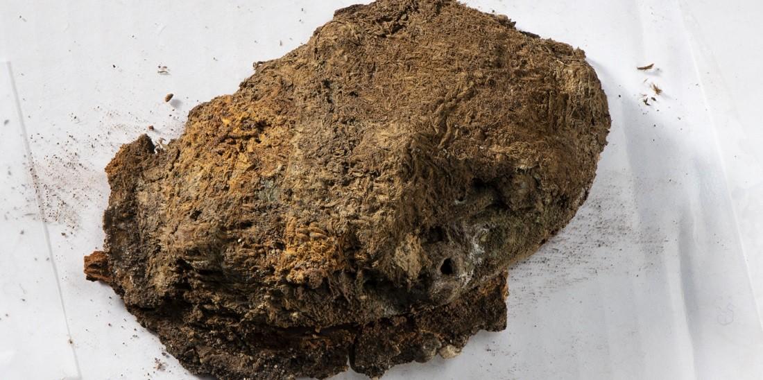 Conjunto de tecidos bordados da era viking é encontrado no túmulo de uma mulher enterrada ao sul do condado norueguês de Trøndelag, datado de aproximadamente 850-950 d.C. (Foto: Åge Hojem, NTNU University Museum)