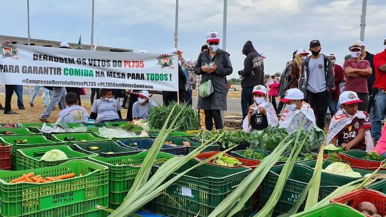 Protesto de agricultores familiares em Brasília (Foto: Contraf/Divulgação)