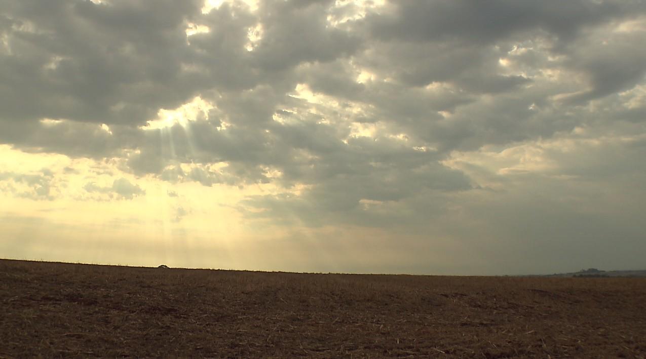 Falta de chuva atrasa plantio de soja na região de Londrina