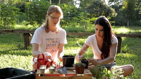 Alimentação saudável: como fazer uma pequena horta orgânica em casa