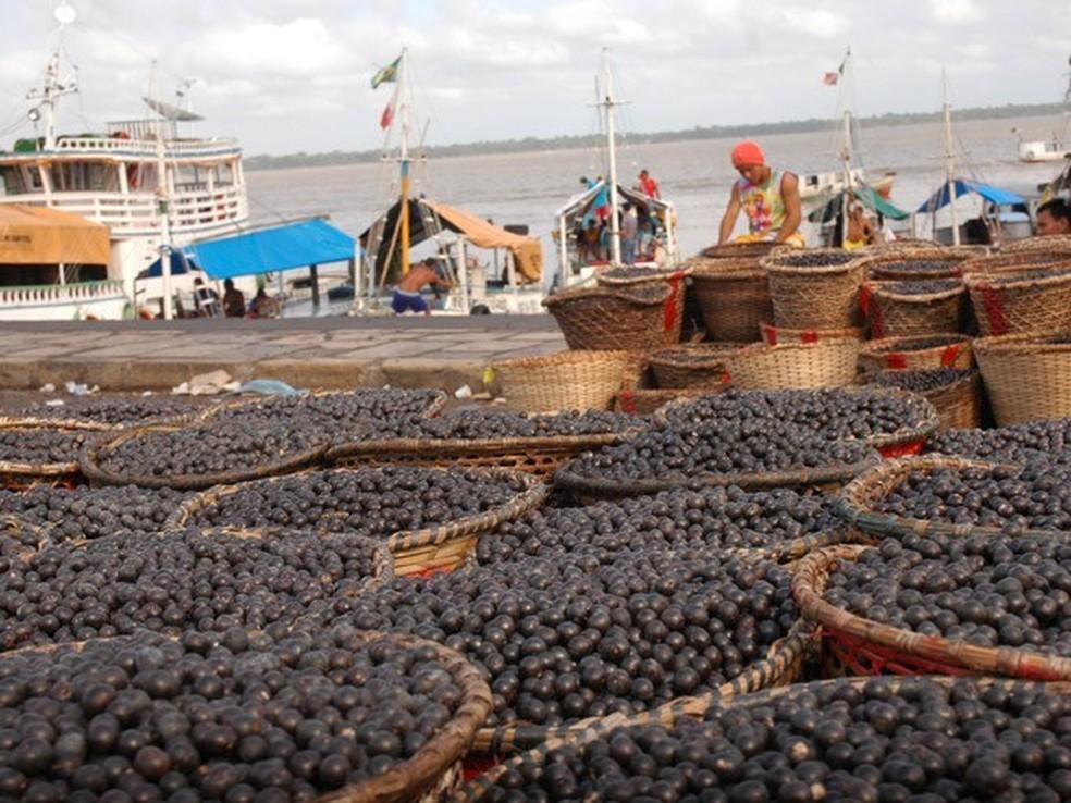 Fruto sendo vendido na feira do açaí — Foto: Divulgação/ Prefeitura Municipal de Belém