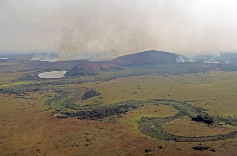Ao longo do período de seca, cursos d'água são cobertos por vegetação e biomassa.  — Foto: GOV-MS/Reprodução