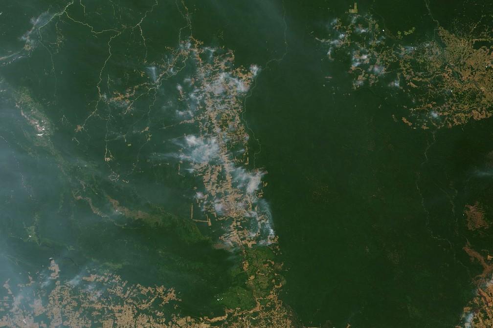 Imagem de satélite registrada na segunda-feira (19) e divulgada nesta sexta (23) pela Nasa mostra foco de queimada em Novo Progresso (PA) — Foto: Nasa