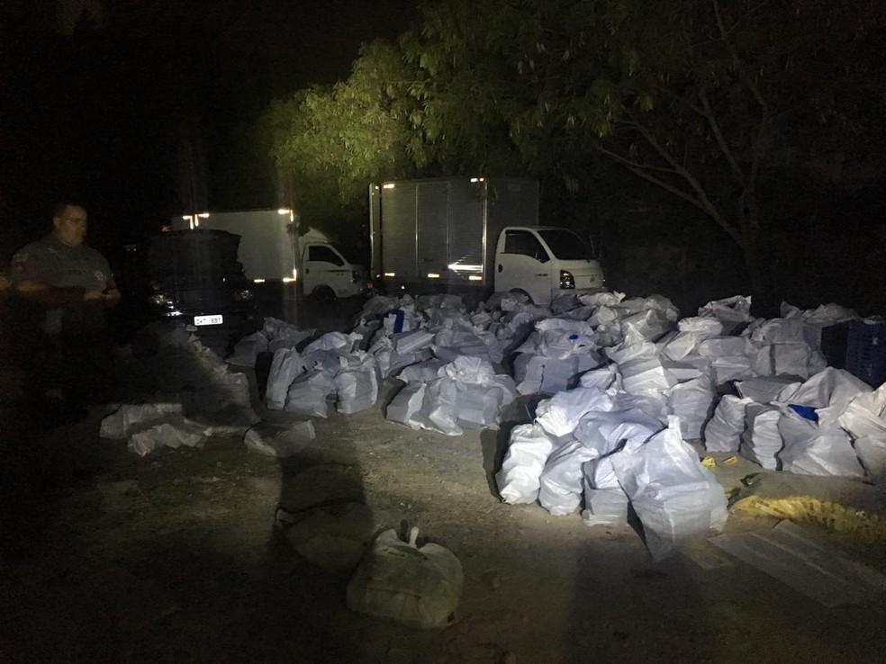 320 sacos com maconha estavam em veículos dentro de empresa — Foto: Divulgação/PM SP