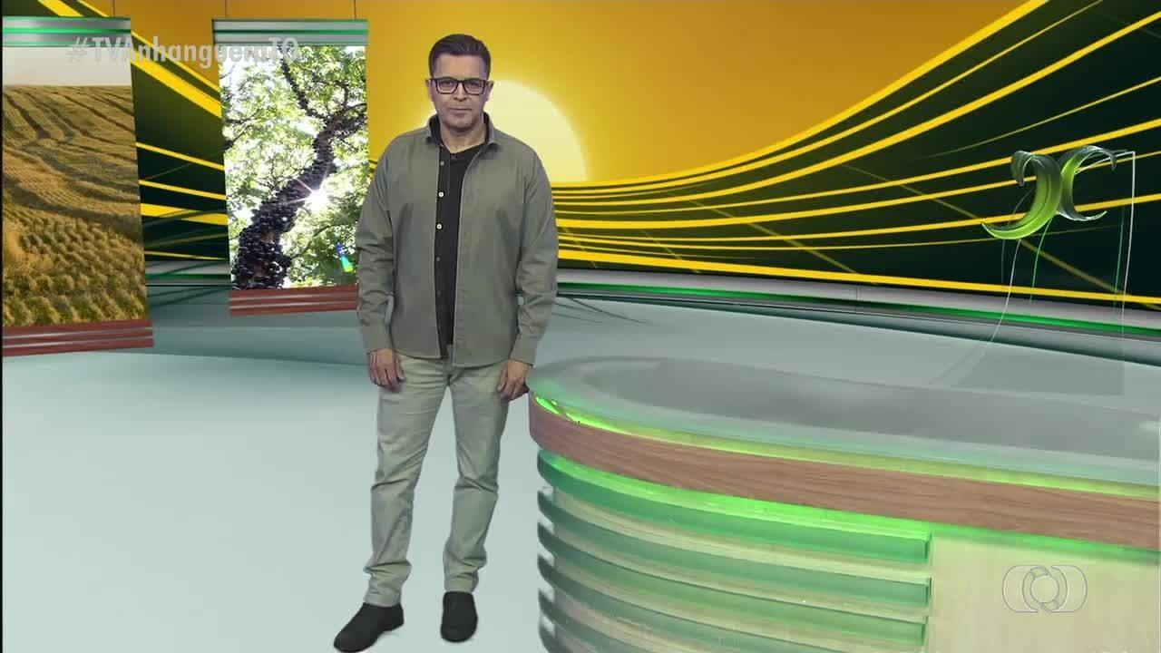 Witzel diz que vai questionar STF sobre mortes pela polícia - Notícias - Plantão Diário