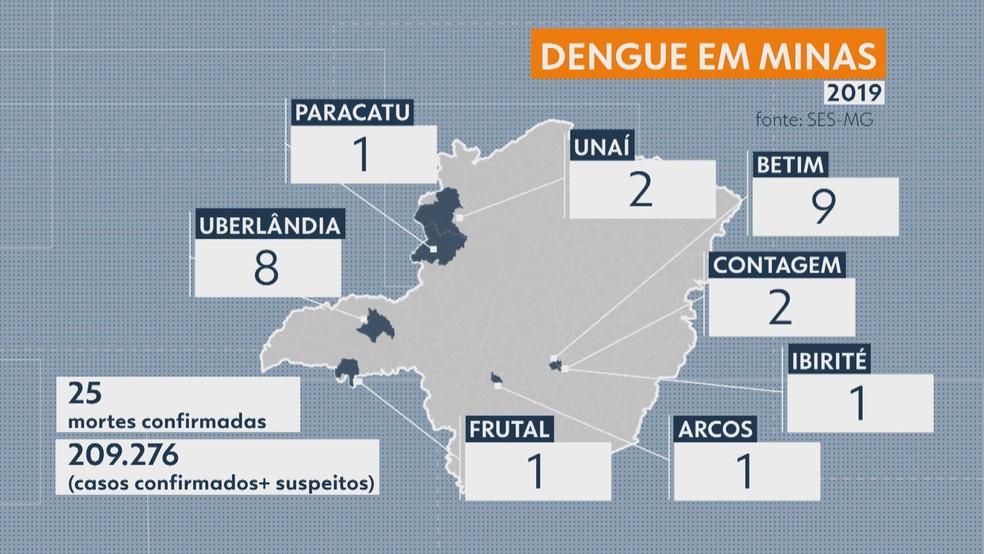 Casos de dengue em Minas - 07/05/2019 — Foto: Reprodução/MG1