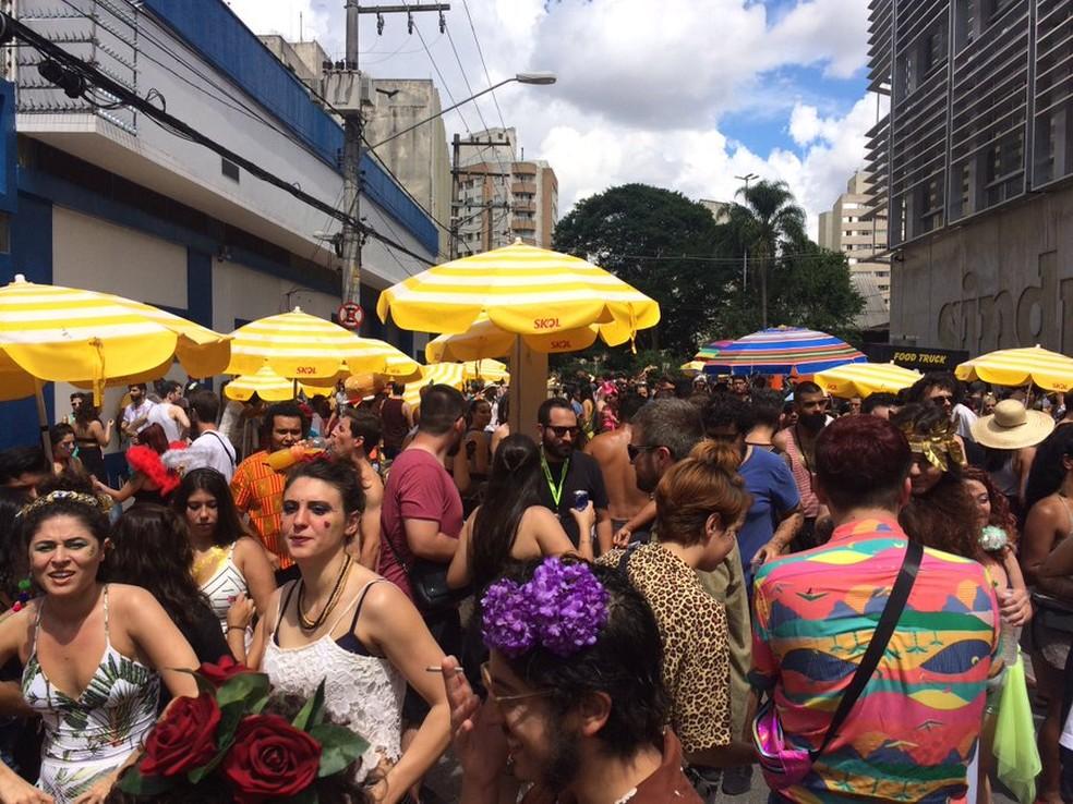 Público no bloco Prato do Dia, em São Paulo. — Foto: G1  SP