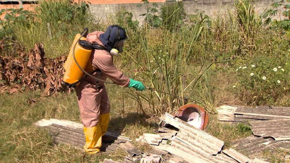 Prefeitura da Serra usa outro inseticida no combate à dengue — Foto: Reprodução/ TV Gazeta