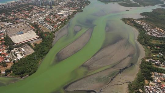 Foto: (Mário Moscatelli/ Projeto Olho Verde)