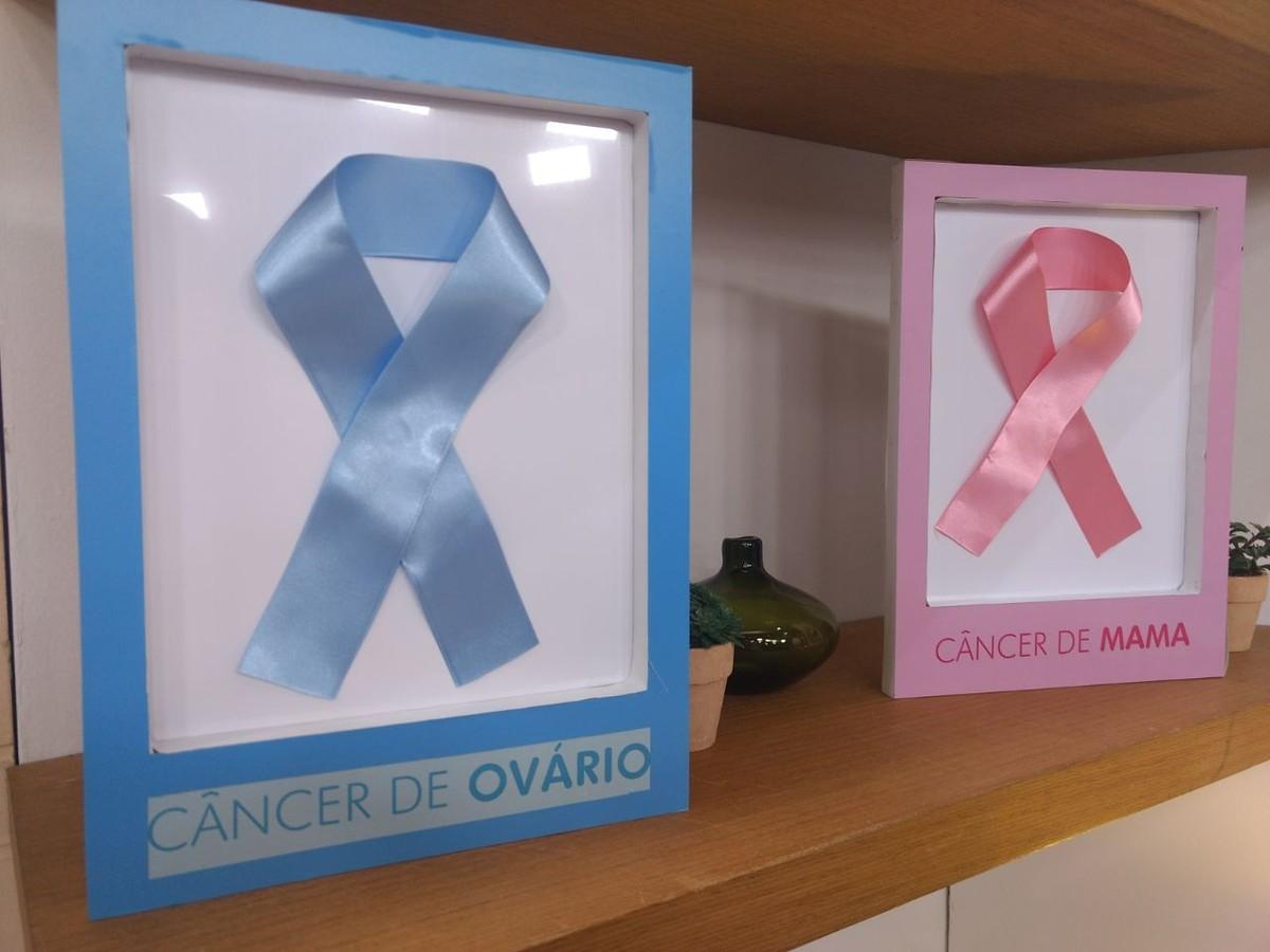 Saúde das mamas e dos ovários: como evitar e tratar o câncer