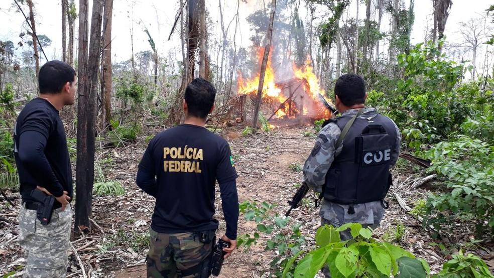 Polícias Federal e Militar Ambiental acompanham as fiscalizações nas unidades de conservação (Foto: Luiz Martins/Rede Amazônica)