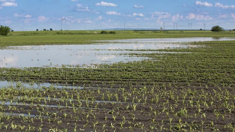 chuva campo alagado 2 (Foto: Getty Images)