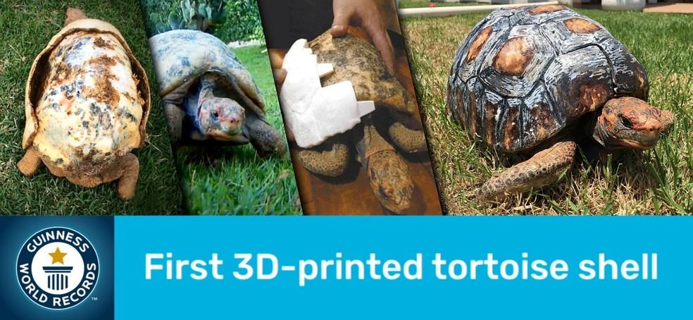 Projeto de designer 3D entrou para o 'Guinness Book', edição 2022 — Foto: Divulgação