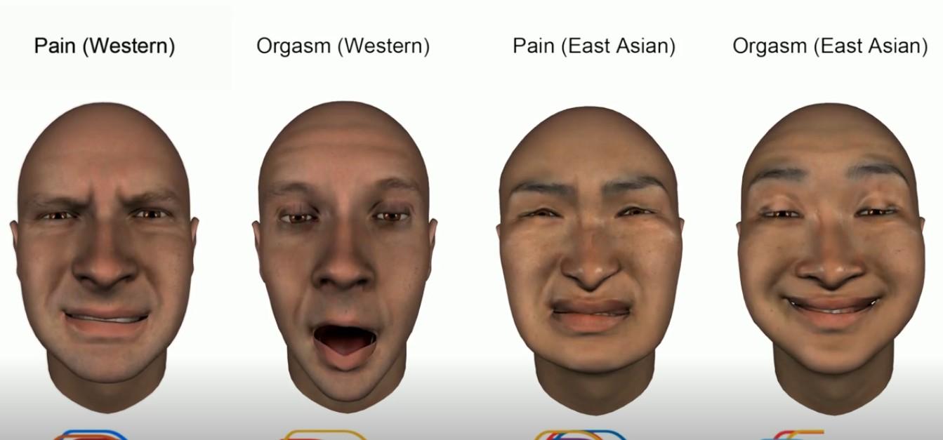 Estudo mostra que pessoas de diferentes culturas se expressam de maneira distinta quando sentem dor e orgasmo. As diferenças de reações são visualmente perceptíveis entre ocidentais e orientais (Foto: Reprodução)