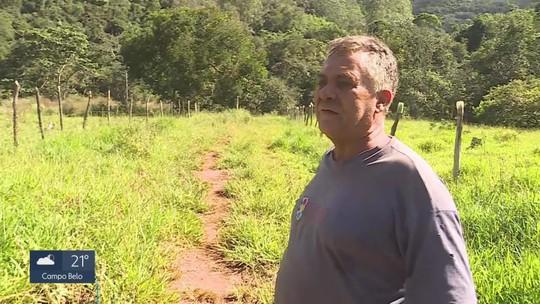Vale desmatou terrenos particulares em Barão de Cocais antes de autorização da Justiça