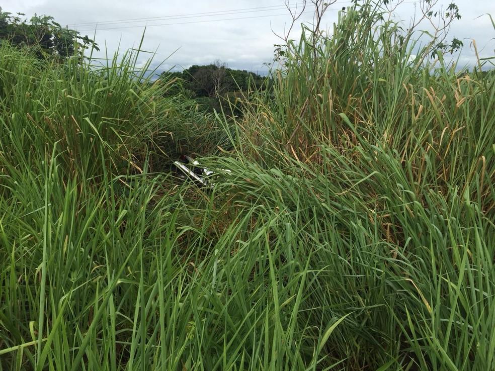 Vereador foi encontrado caído em um matagal, na Rodovia Júlio Budiski (Foto: Bruna Bachega/TV Fronteira)