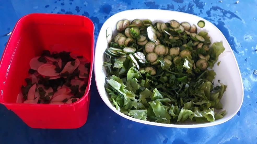Salada feita por Márcia Vargas para os colaboradores da obra em Goiânia, Goiás — Foto: Reprodução/Márcia Vargas