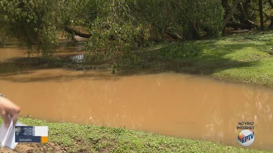 Após chuvas, Rio Sapucaí sobe quase um metro em uma semana