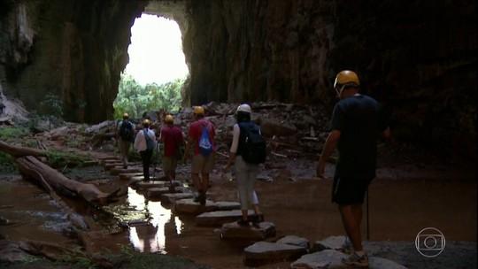 Floresta dentro de caverna é a atração do quadro Partiu Férias