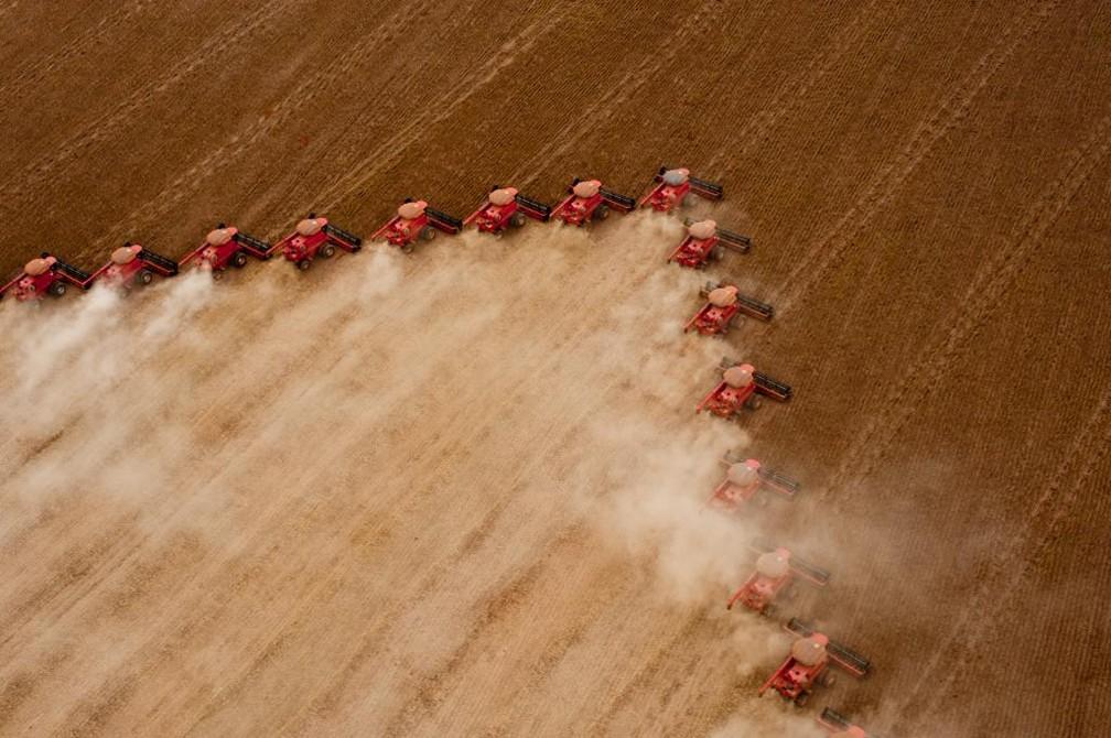 A soja é a cultura que mais movimenta o setor — Foto: Secom-MT/ Divulgação