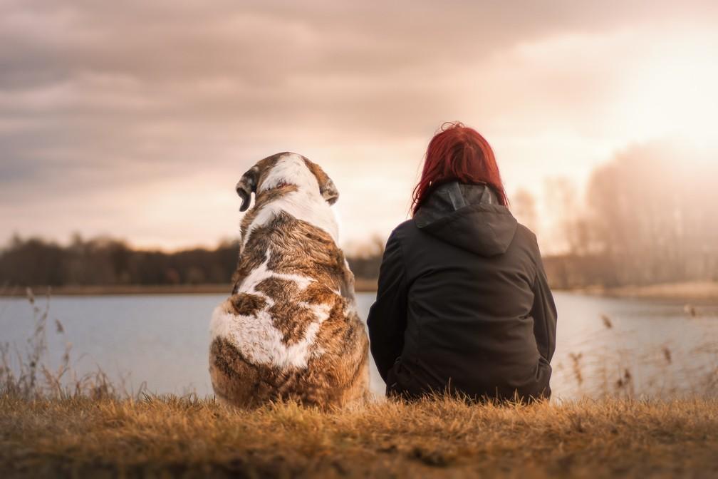 """A partir do estudo, a pesquisadora acredita que """"algumas pessoas têm uma propensão inata maior para cuidar de um animal de estimação do que outras"""". — Foto: Sven Lachmann/Pixabay"""