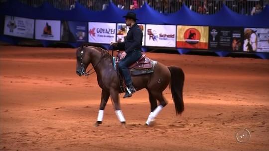 Fora do octógono, Minotauro participa de competição de cavalos no interior de SP