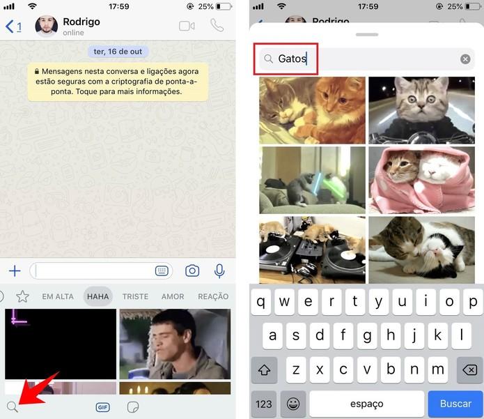 Pesquise por GIFs específicos nas conversas do WhatsApp (Foto: Reprodução/Rodrigo Fernandes)