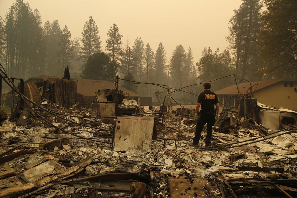 Homem procura por vítimas de incêndio Camp Fire, que destruiu cidade no norte da Califórnia — Foto: John Locher/AP Photo