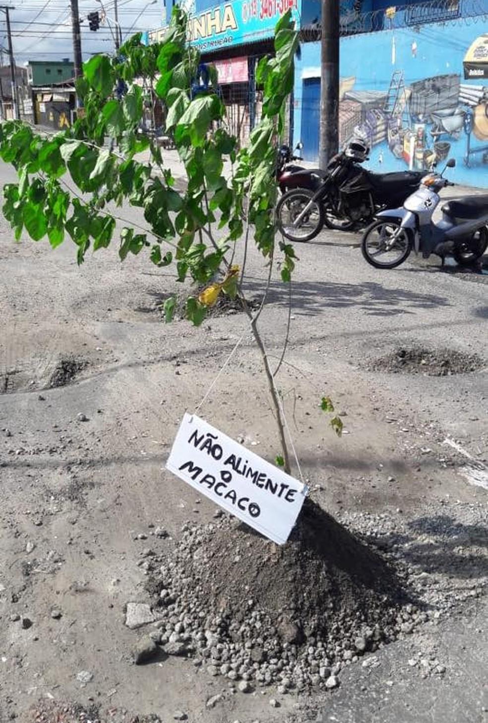 Moradores penduraram mensagens com o intuito de chamar atenção para o problema — Foto: Divulgação/Facebook