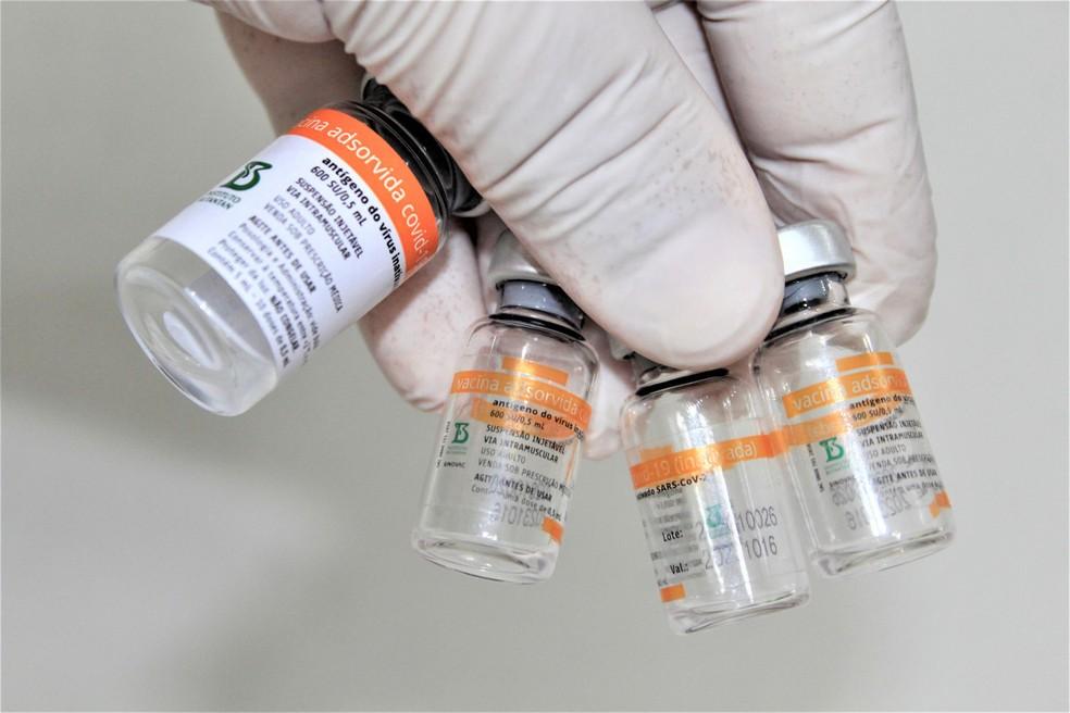 Frascos da vacina CoronaVac, contra a Covid-19. — Foto: WILLIAN MOREIRA/ESTADÃO CONTEÚDO