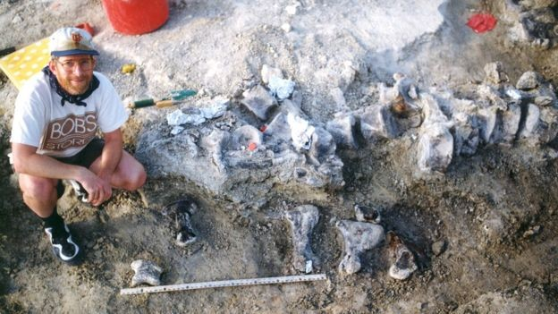 Pesquisador da Universidade do Kansas ao lado de ossos de pé do braquiossauro em escavação no ano de 1998 (Foto: CORTESIA DO ARQUIVO DA UNIVERSIDADE DO KANSAS/BBC)