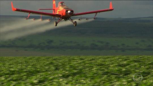 Agrotóxico é risco para quem vive perto de áreas de plantio, diz ONG