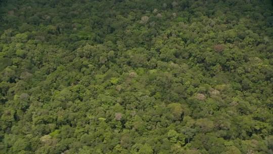 Ministro valida envio de R$ 2,6 bilhões para Amazônia e educação