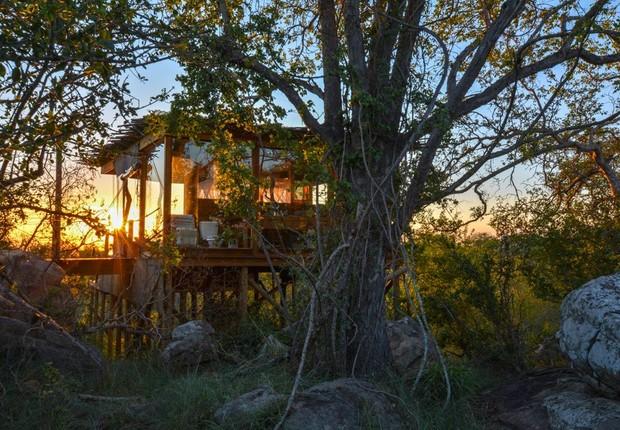 Tinyeleti Treehouse  (Foto: Reprodução/Facebook)