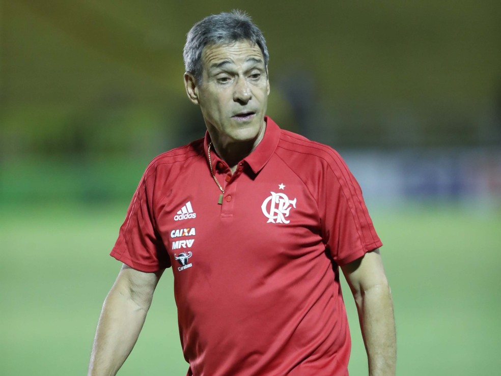 Carpegiani ficou surpreso e satisfeito com o comportamento dos garotos (Foto: Gilvan de Souza / Flamengo)