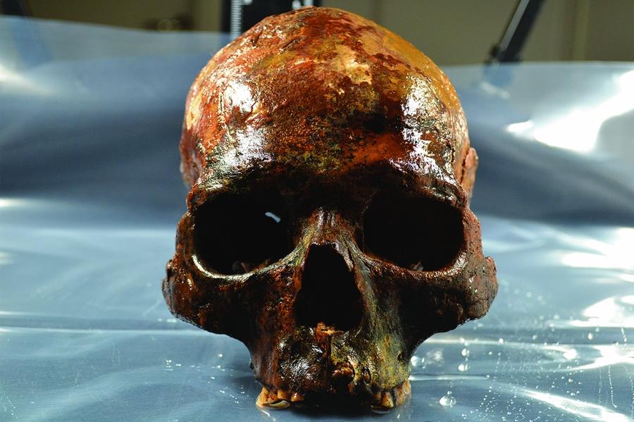 Cientistas analisam crânios que foram exibidos em estacas há 8 mil anos