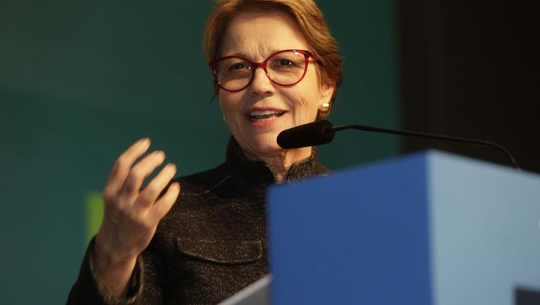 Tereza Cristina (Foto: Guilherme Martimon/MAPA)