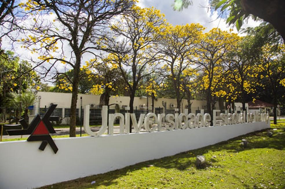 Universidade Estadual de Maringá (UEM) — Foto: Divulgação/UEM